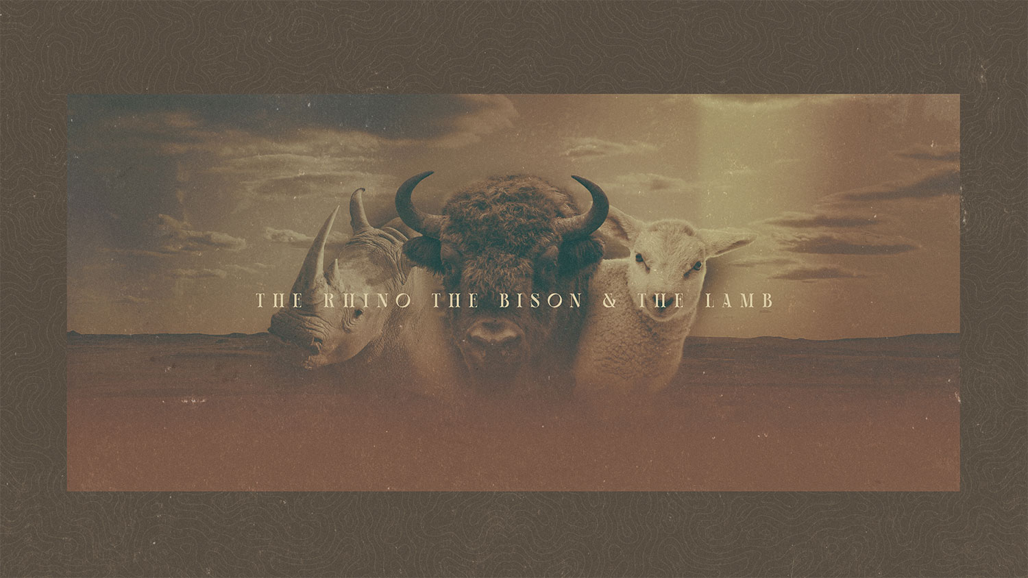 The Rhino, the Bison, and the Lamb